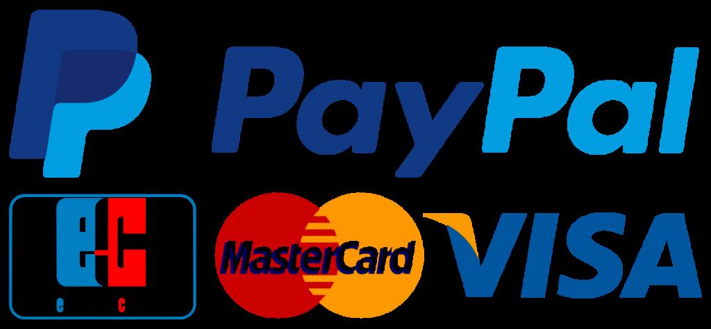 zahlungsmethoden für shopify shop erstellen. Paypal, mastercard, visa